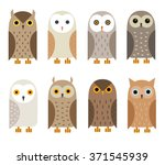 Stock vector vector owl characters set owl icons barn owl snowy owl burrowing owl west american owl eagle 371545939