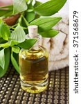 essential oil for aromatherapy  ... | Shutterstock . vector #371568679