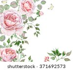 Stock photo floral watercolor frame with roses on white background 371692573