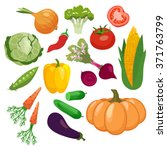 vegetables icons set with... | Shutterstock .eps vector #371763799