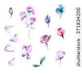 watercolor painting. floral... | Shutterstock . vector #371834200