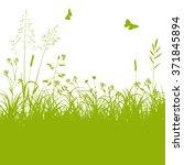 fresh green meadow landscape... | Shutterstock .eps vector #371845894
