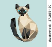 low poly  cat. triangle... | Shutterstock . vector #371859430