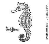 graphic vector seahorse drawn... | Shutterstock .eps vector #371886544