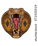 A King Cobra Snake Head With...