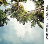 nature tropic background in... | Shutterstock . vector #372035863