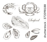 vector hand drawn seafood set   ... | Shutterstock .eps vector #372098188