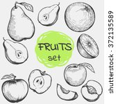 set of hand drawing fruits for...   Shutterstock .eps vector #372135589