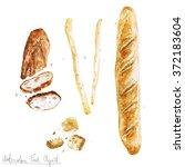 watercolor food clipart  ...   Shutterstock . vector #372183604