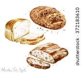 watercolor food clipart  ... | Shutterstock . vector #372183610