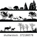 Stock vector vector set of illustration with wild animals bear flamingo deer in different habitats 372188578