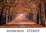 This photo was taken in a park in autumn, where people walk, read, and have a relax. - stock photo