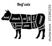 cuts of beef vector illustration | Shutterstock .eps vector #372381253