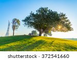aspire park in doha city  the... | Shutterstock . vector #372541660