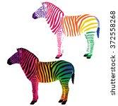 multicolored zebra. vector...   Shutterstock .eps vector #372558268