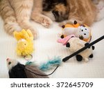 Stock photo cat breastfeeding the kittens with toy blur background 372645709
