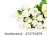 bouquet of tulips isolated on... | Shutterstock . vector #372751870