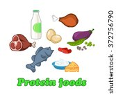 protein healthy food for people ... | Shutterstock .eps vector #372756790