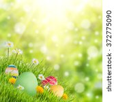 easter nature holiday...   Shutterstock . vector #372775090