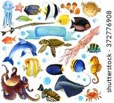 sea fish watercolor set. ... | Shutterstock . vector #372776908