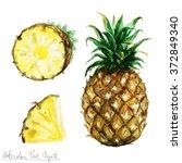 watercolor food clipart  ...   Shutterstock . vector #372849340