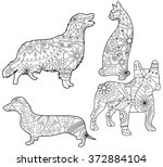 Vector Coloring Set Pets