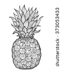 ananas  pineapple  exotic fruit ... | Shutterstock .eps vector #373053433