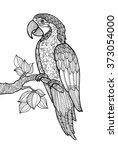 parrot ara macao  exotic bird... | Shutterstock .eps vector #373054000