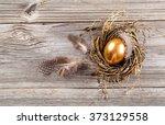 golden egg in nest on dark... | Shutterstock . vector #373129558