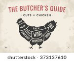 cut of meat set. poster butcher ... | Shutterstock .eps vector #373137610