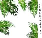 Palm Leaf Vector Background...
