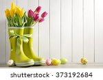 rain boots  fresh tulips and... | Shutterstock . vector #373192684