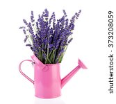 Bouquet Of Lavender Flowers In...
