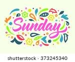 sunday handwritten word ... | Shutterstock .eps vector #373245340