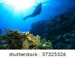 scuba diver on a sun lit reef | Shutterstock . vector #37325326