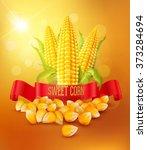 vector background with grains... | Shutterstock .eps vector #373284694