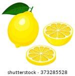 yellow lemon  sliced yellow... | Shutterstock .eps vector #373285528
