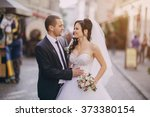 beautiful summer wedding that... | Shutterstock . vector #373380154