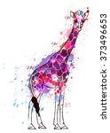 Giraffe Covered With Colorful...
