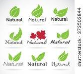 Natural Logo Design Vector...