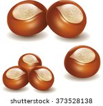 shea nut | Shutterstock .eps vector #373528138