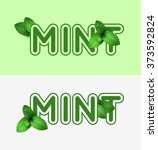 leaf of fresh mint. fresh mint...   Shutterstock .eps vector #373592824