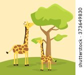 giraffes eating together.... | Shutterstock .eps vector #373649830