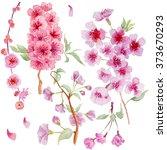 Watercolor Branch Blossom...