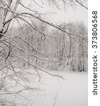 snow big branch | Shutterstock . vector #373806568