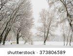 chrismas snow morning  | Shutterstock . vector #373806589