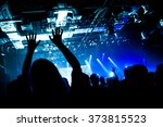 fans with raised hands at the... | Shutterstock . vector #373815523