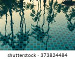 Palm Trees Reflected In The...