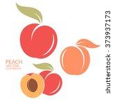 Peach. Set. Vector Illustration