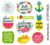 vector set of beautiful labels... | Shutterstock .eps vector #373974820
